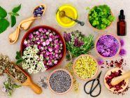 تعرفي على أهم الأعشاب المفيدة لبشرتك وجمالها