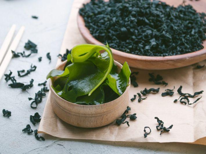 أعشاب البحر وأهم فوائدها لصحتك