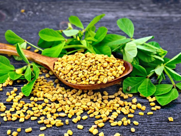 أهم الاستخدامات الصحية للأعشاب