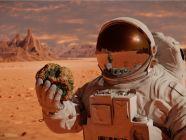 صخور المريخ: صفاتها، وأهميتها