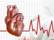 تسارع دقات القلب: الأعراض، الأسباب، الفحوصات والعلاج