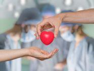 شروط التبرع بالقلب: للمتبرع والمتلقي