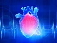 متى يمكن ممارسة العلاقة الزوجية بعد القلب المفتوح؟