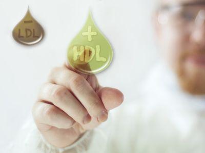 الكوليسترول الجيد: فوائده وطرق الحفاظ عليه
