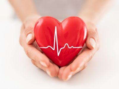 عدم انتظام دقات القلب: التشخيص، والفحوصات التي يمكن أن يجريها الطبيب