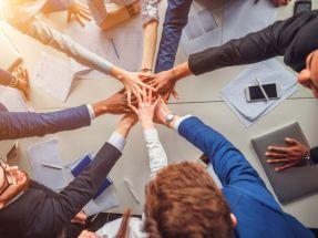 ما أهمية العمل الجماعي؟