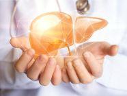 طرق تنظيف الكبد ومدى فاعليتها وأمانها