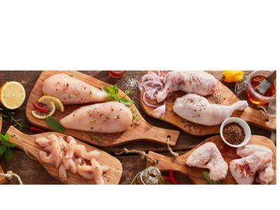 بكتيريا السالمونيلا في الدجاج: كيف تقضي عليها؟