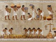 أبرز جوانب التربية في العصور القديمة