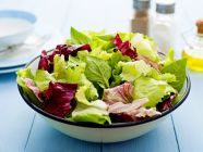 اكتشف القيمة الغذائية للخس بأنواعه المختلفة!