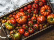 بالجداول: القيمة الغذائية للطماطم بأنواعها