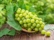 كم سعرة حرارية في العنب؟