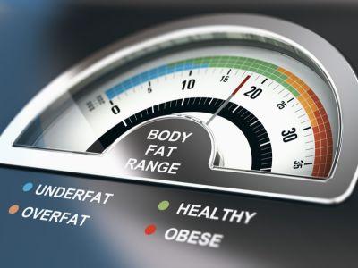 ما هي نسبة الدهون الموجودة في الجسم