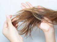 تعرفي على طرق الوقاية من جفاف الشعر
