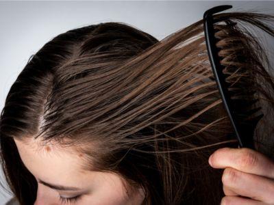 لماذا يصبح الشعر دهنيًا؟