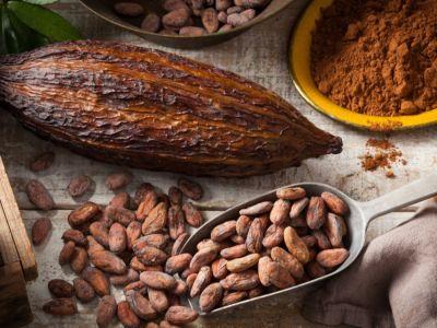 وصفات الكاكاو للشعر وفوائدها
