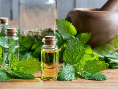 5 وصفات بالأعشاب لتساقط الشعر