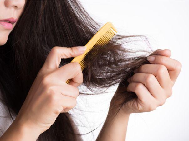 تعرفي على أفضل الطرق لإصلاح الشعر التالف