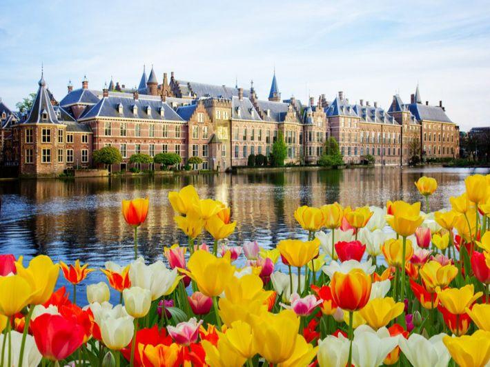 أهم المعلومات عن لاهاي هولندا: لرحلة من العمر