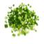 أربعة أعوادٍ من البصل الأخضر المقطع لقطع صغيرة.